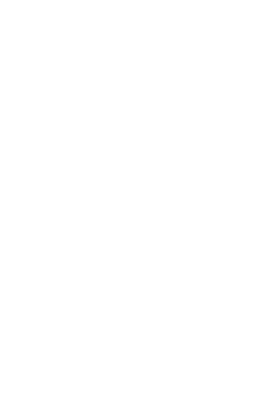 NZ silhouette white